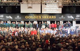 Golden Shears